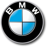 BMW Summer Internship Program logo